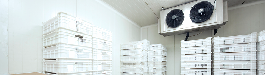 Watch our FREE refrigeration and gas efficiency masterclasses webinars. Learn how to save money, reduce your energy consumption and increase the productivity of your business!